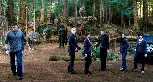 Training Scene Eclipse Still: Vampires+Werewolves+Bella