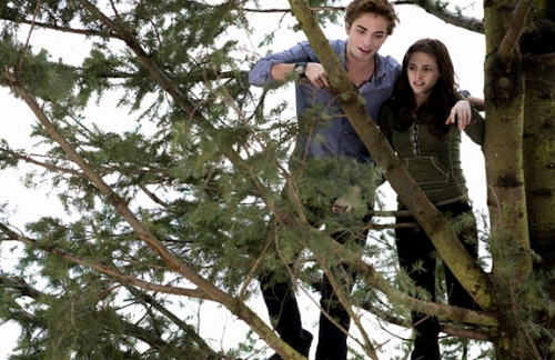 The movie adds an amazing sequence in which Edward takes Bella to the top of an enormous tree for a view of the mountains and river below. It actually totally rules.
