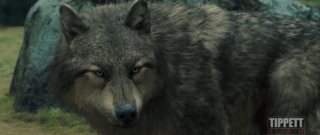Twilight Wolf Pack Nee...